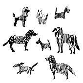 Hand drawn  dogs set. Vector  illustration.