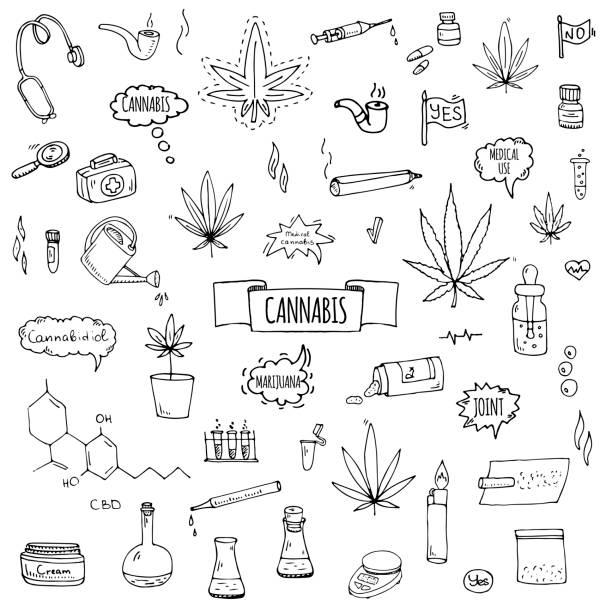 Hand drawn doodle Cannabis icons set vector art illustration