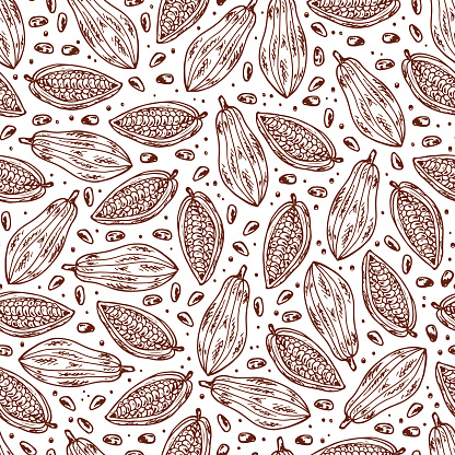 Hand drawn doodle Cocoa fruits and cocoa beans Seamless pattern