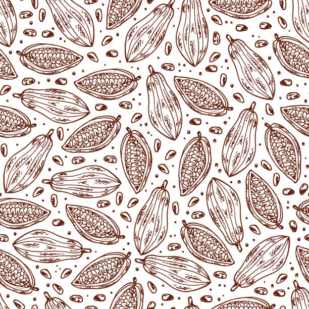 hand drawn doodle cocoa fruits and cocoa beans seamless pattern - plant pod stock illustrations