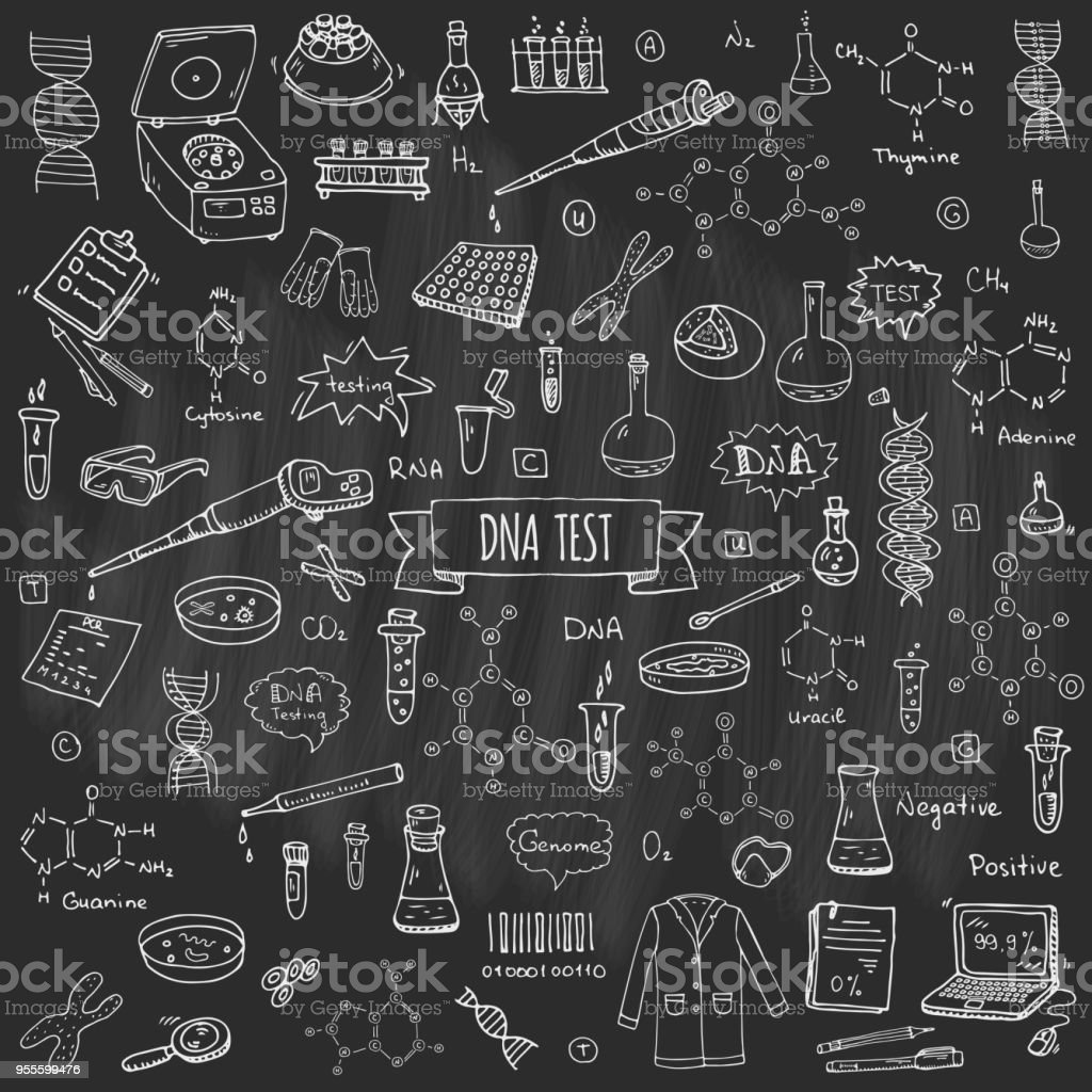 Hand drawn doodle DNA test icons set vector art illustration