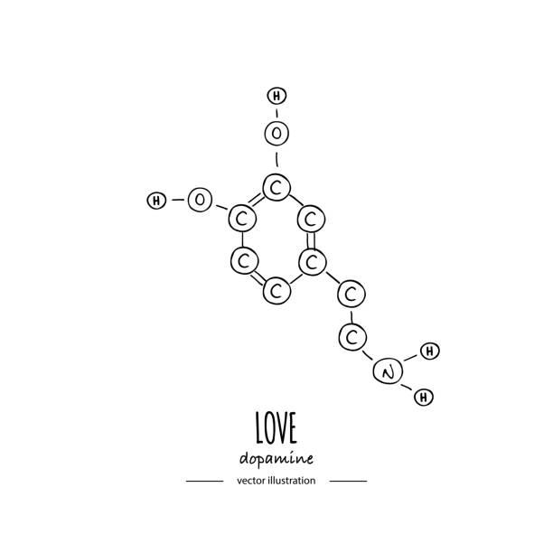 Hand drawn doodle Dopamine chemical formula icon Vector illustration Cartoon molecule element Sketch Love symbol molecular structure Structural scientific hormone formula isolated on white background vector art illustration