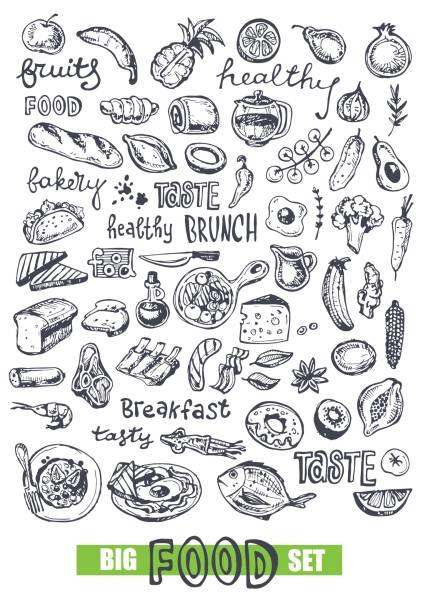 Hand drawn doodle food illustration. Healthy food Sketch food avocado drawings stock illustrations