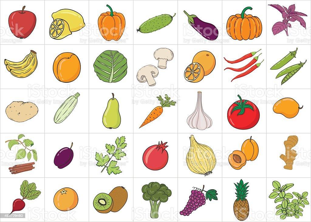 Name Verdura: Mano Disegno Doodle Frutta E Verdura Con Nome