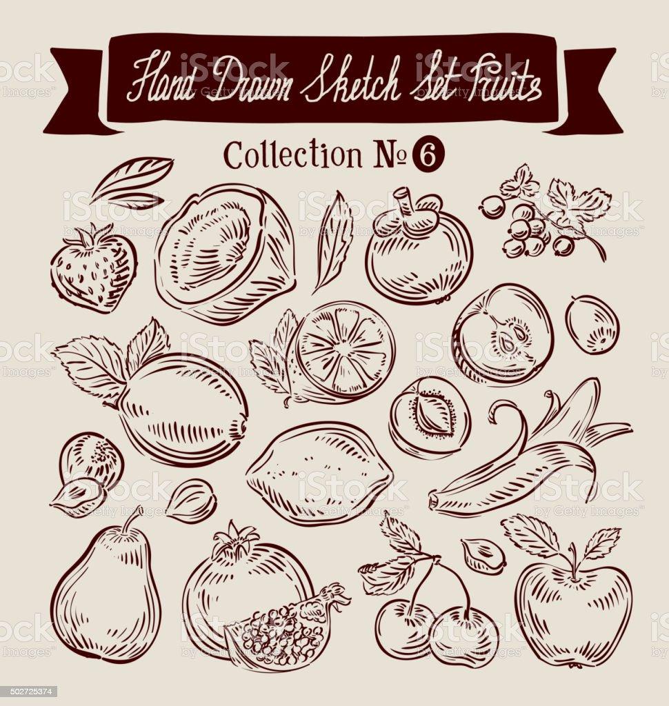 Hand drawn doodle set fruit. Vector illustration vector art illustration