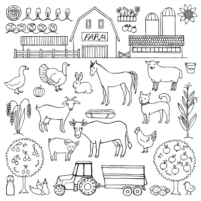 Hand drawn doodle set with farm