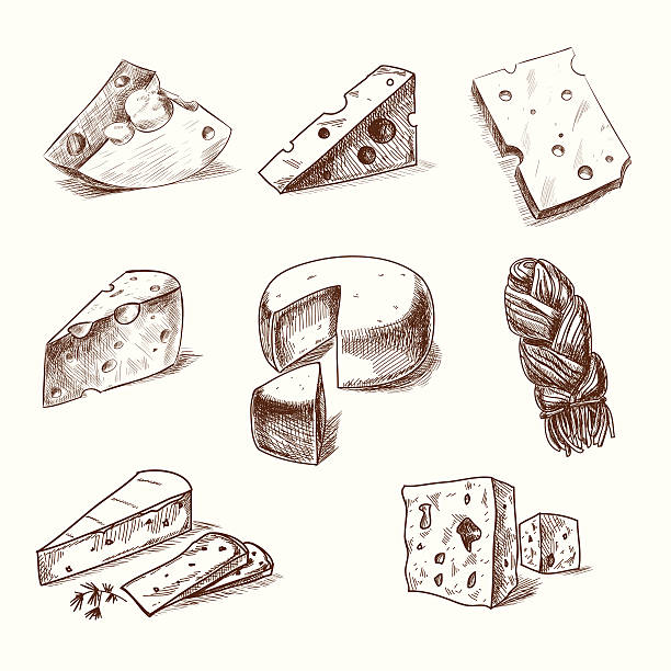 hand drawn doodle sketch cheese with different types of cheeses - delis stock illustrations