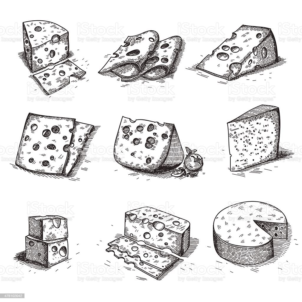 Hand Drawn Doodle Sketch Cheese With Different Types Of