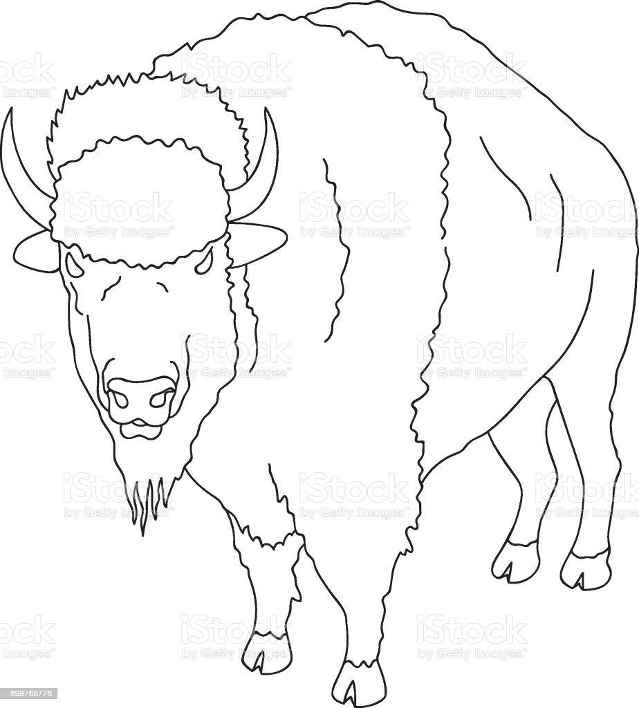 Hand Drawn Doodle Sketch Line Art Vector illustration of Wild Buffalo. Black Outline  Logo Design Element. Coloring Book Page for Adults Kids. Wanderlust Nature vector art illustration