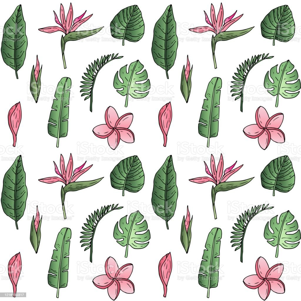 Hand Drawn Doodle Tropical Leaves And Flowers Stock Illustration Download Image Now Istock To get more templates about posters,flyers,brochures summer and autumn color tropical leaf hand drawing pattern seamless. https www istockphoto com vector hand drawn doodle tropical leaves and flowers gm1216110317 354478045