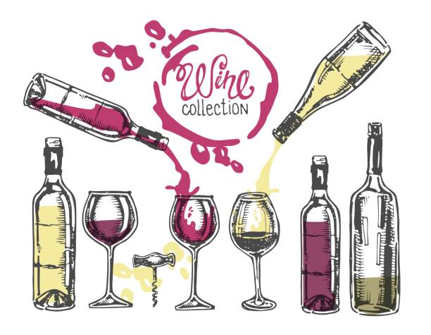 hand drawn doodle wine collection. - butelka wina stock illustrations