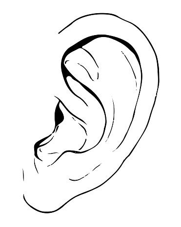 Hand Drawn Ear