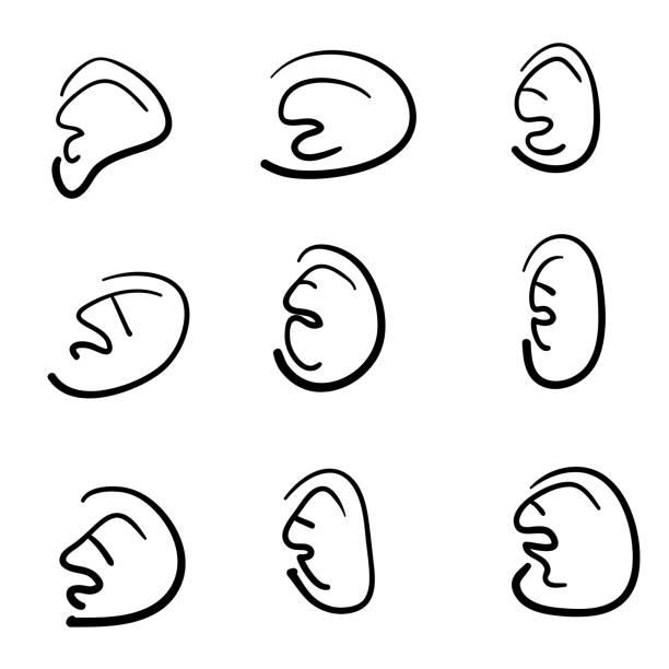 handgezeichnete ohren sammlung mit doodle cartoon stil illustration vektor isoliert - sensorischer impuls stock-grafiken, -clipart, -cartoons und -symbole