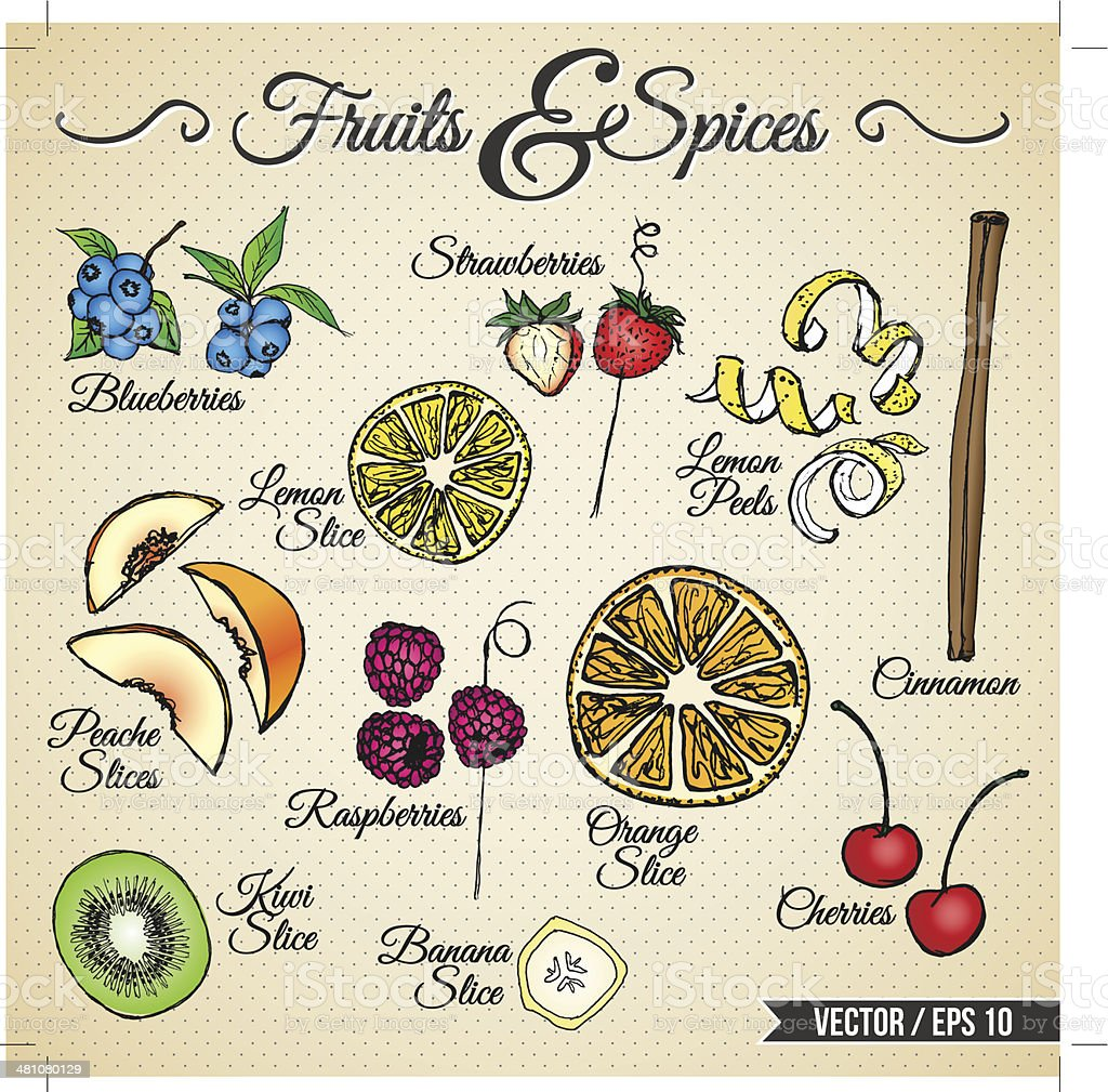 FRUITS & SPICES - hand drawn elements vector art illustration