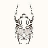 Hand drawn engraving Sketch of Scarab Beetle