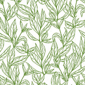 Hand drawn engraving style Green tea leaves Seamless pattern. Vector illustration