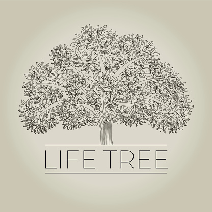 Hand drawn family life tree with apples