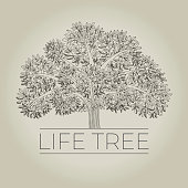 Hand drawn family life tree with apples for card, header, invitation, poster, social media, post publication. vector poster with huge strong tree.