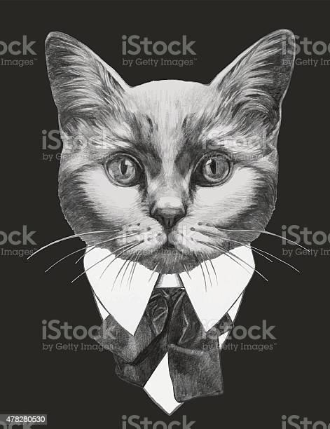 Hand drawn fashion illustration of cat vector id478280530?b=1&k=6&m=478280530&s=612x612&h=m ly96vfa w7twpnr28ot6yqbs ghn4hqms7pimng5i=