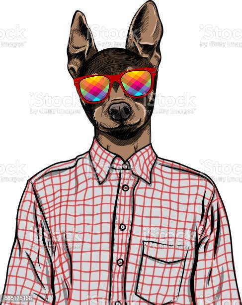 Hand drawn fashion illustration of dressed up english toy terrier vector id585175156?b=1&k=6&m=585175156&s=612x612&h=e6goc0psoey2z65ft7sbjgscgip1eqsqoxpxk fyohu=