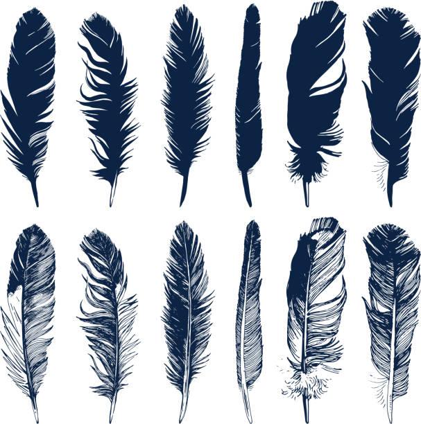 ręcznie rysowane pióra ustawione na białym tle - pióro przyrząd do pisania stock illustrations