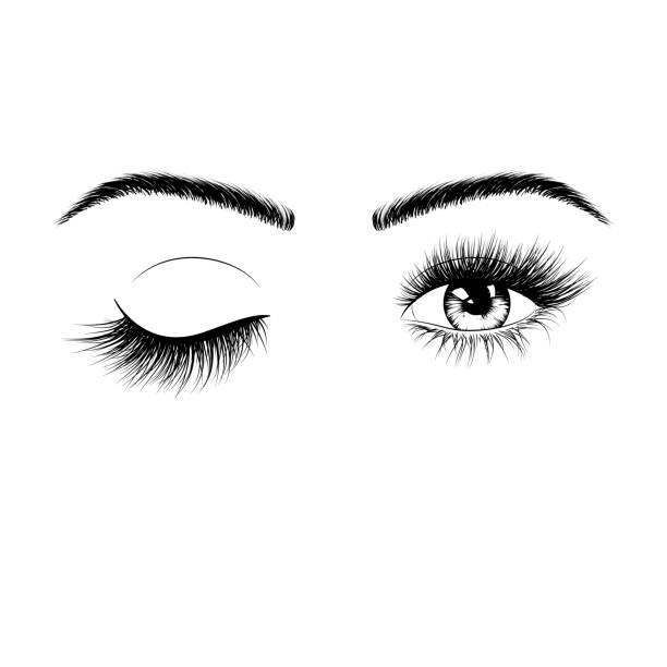 Hand drawn female eyes silhouette. Wink one eye. Eyes with eyelashes and eyebrows. Vector illustration isolated on white background Hand drawn female eyes silhouette. Wink one eye. Eyes with eyelashes and eyebrows. Vector illustration isolated on white background blinking stock illustrations