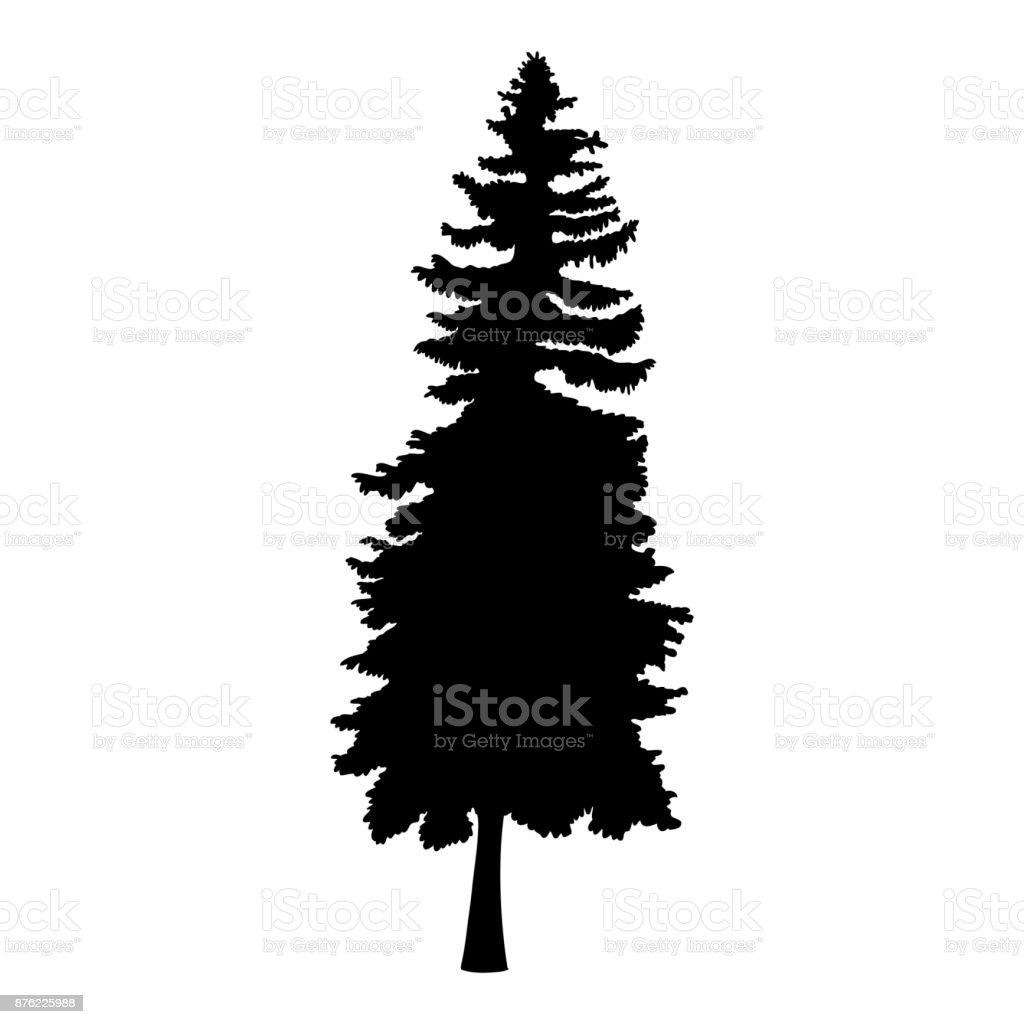 hand drawn fir tree vector illustration silhouette of black pine rh istockphoto com pine tree vector free pine tree vector art