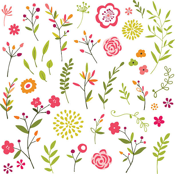 Hand Drawn Floral Design ELements Hand drawn floral design elements.  Hi res jpeg included.  Scroll down to see more of my illustrations. plant stem stock illustrations