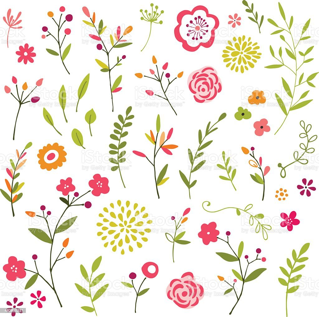 Hand Drawn Floral Design ELements vector art illustration