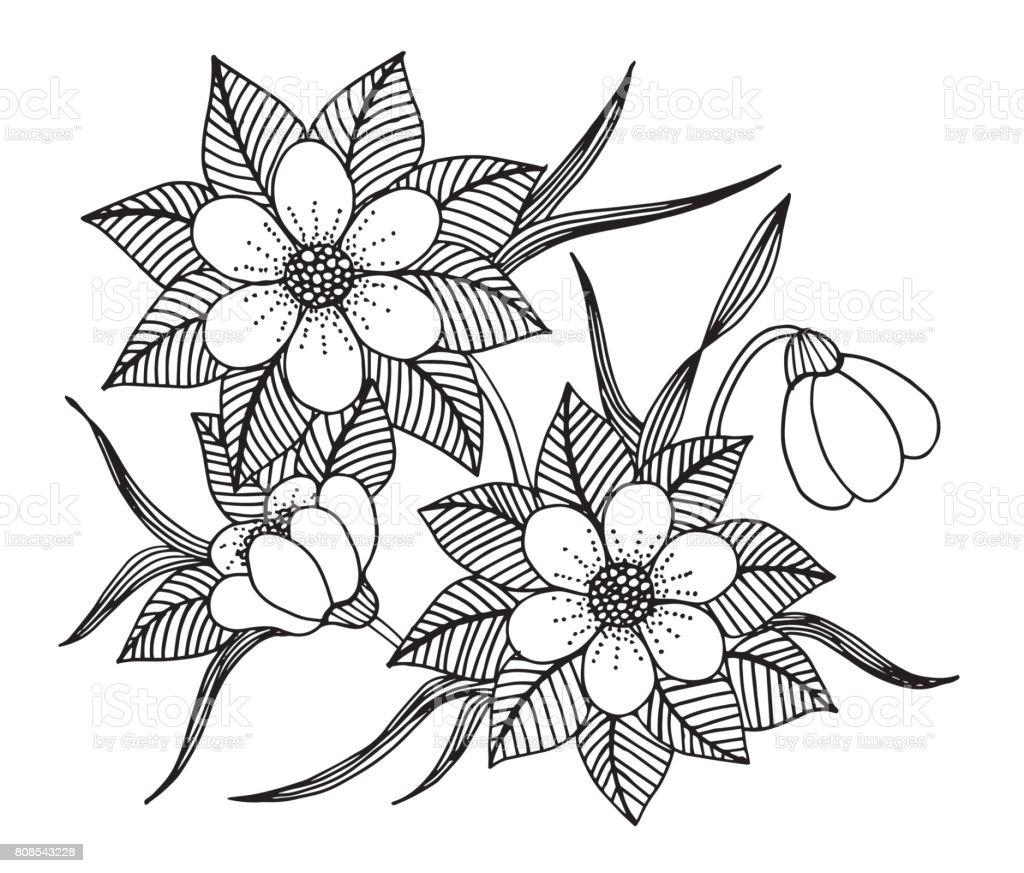 El Cekilmis Cicek Doodle Boyama Kitabi Illustrasyon Cember Boyama