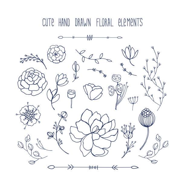 stockillustraties, clipart, cartoons en iconen met hand getekend floral elementen collectie bladeren bloemen takken - floral line