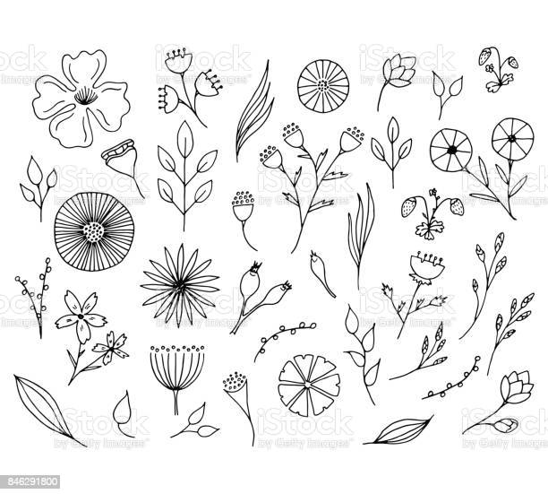 Hand drawn floral elements isolated doodle flowers vector id846291800?b=1&k=6&m=846291800&s=612x612&h=hqgqu8suphgylxmrx9fowahxfmyxlicpgipnbyqmo9a=