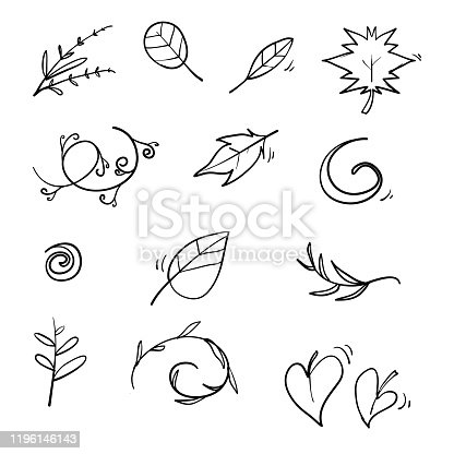Hand drawn floral elements. Vintage leaves botanical illustrations. with doodle style vector isolated on white