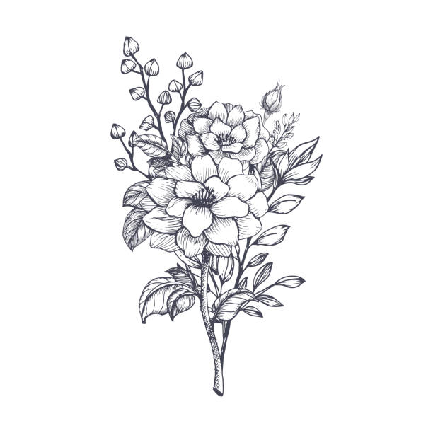 Hand drawn flower bouquet Hand drawn flower bouquet in sketch style. Vector plants bunch stock illustrations