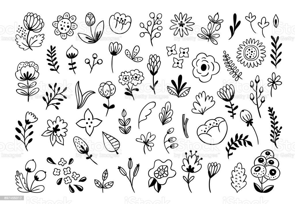 handgezeichnete blumen und pflanze groß vektorsatz