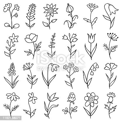 Set of hand drawn flowers. Doodle design elements.