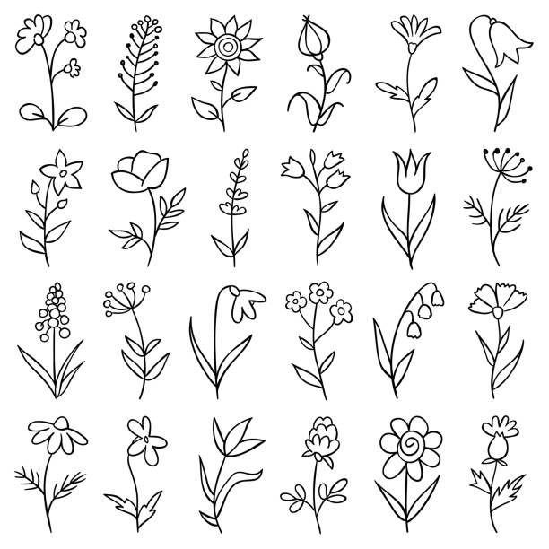Hand drawn flowers Set of hand drawn flowers. Doodle design elements. lavender plant stock illustrations