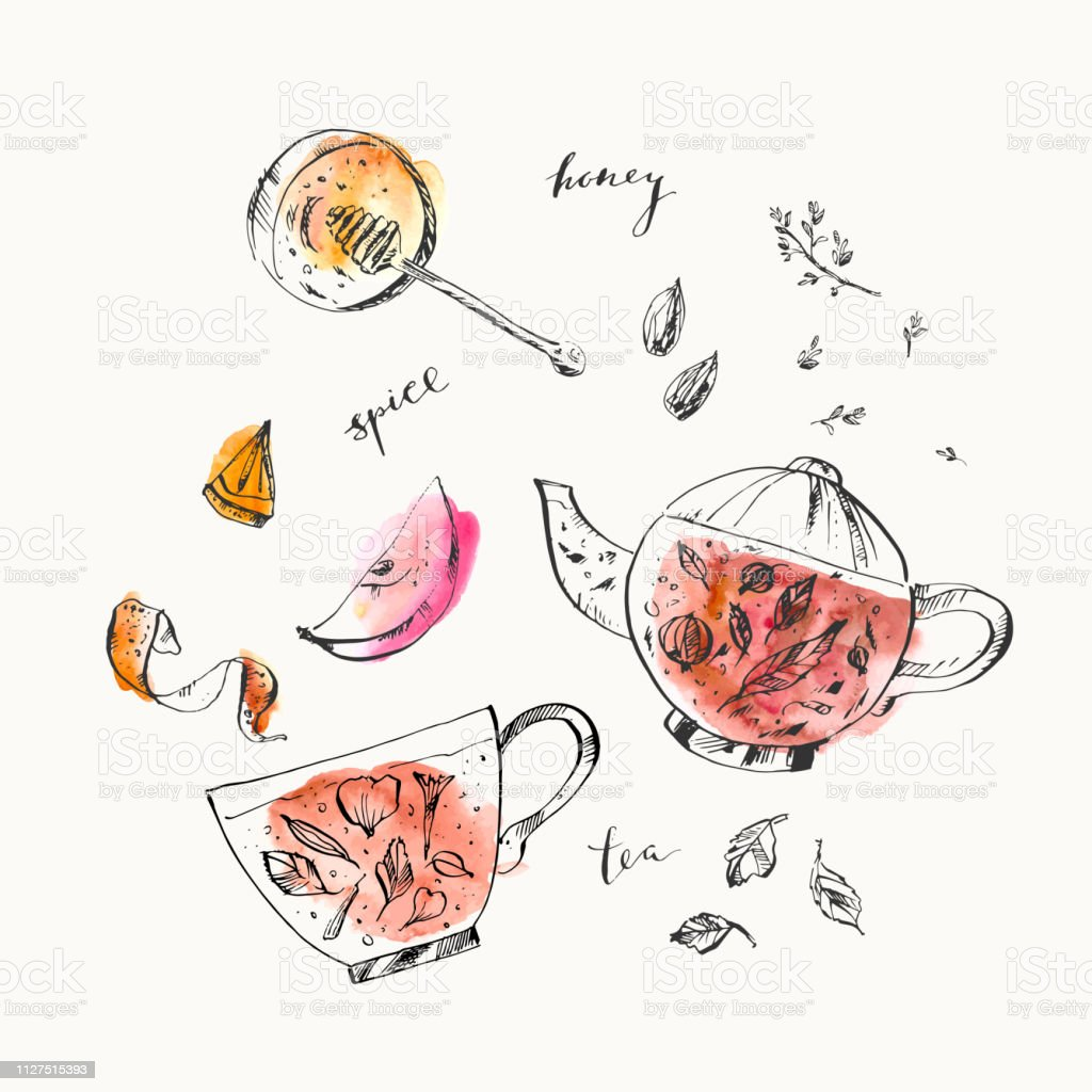 Hand drawn food and drink illustration. Ink and watercolor sketch of...