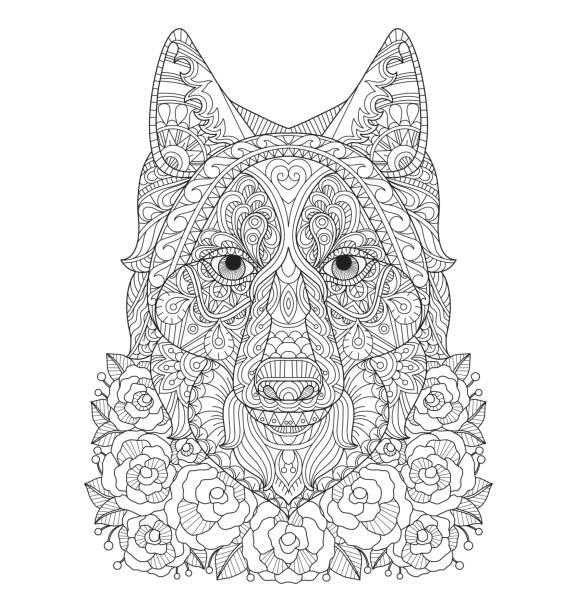 Mano dibujada Fox en el jardín de rosas para colorear adultos página. - ilustración de arte vectorial