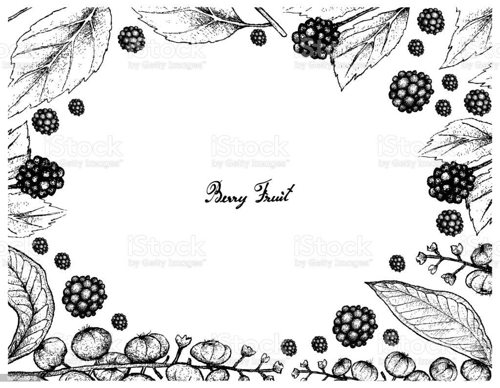 Handgezeichnete Rahmen Des Amerikanischen Beautyberry Und ...
