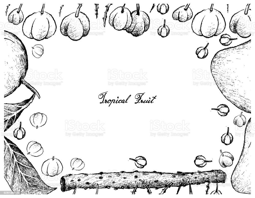 Hand Drawn Frame Of Otaheite Gooseberry And Mango Fruits Stock ...