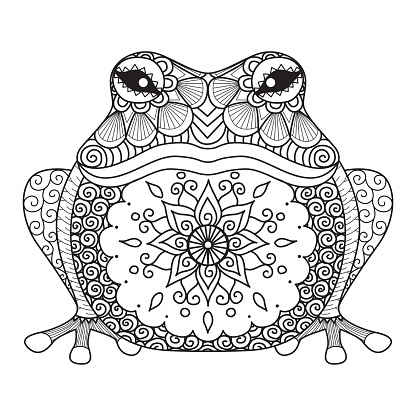 Hand drawn frog for coloring book for adult, shirt design