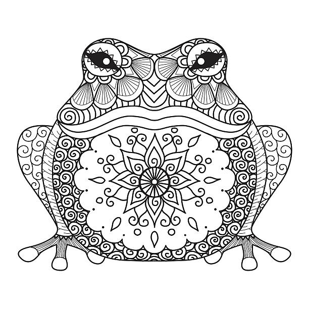 Hand drawn frog for coloring book for adult, shirt design Hand drawn frog for coloring book for adult, shirt design animal markings stock illustrations