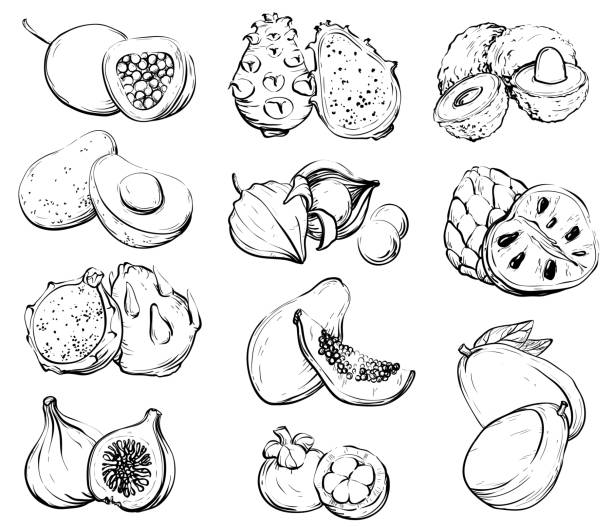 illustrazioni stock, clip art, cartoni animati e icone di tendenza di hand drawn fruit, healthy food - passiflora