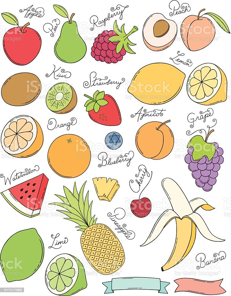 Hand Drawn Fruits vector art illustration