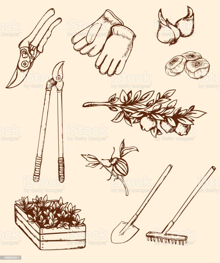 Hand drawn garden tools royalty-free hand drawn garden tools stock vector art & more images of 1940-1949