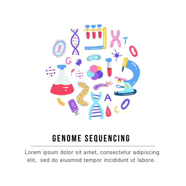 Hand drawn genome sequencing concept. Human dna research technology symbols. Hand drawn genome sequencing concept. Human dna research technology symbols. Nano technology elements made in vector. Human genome project. genomics stock illustrations
