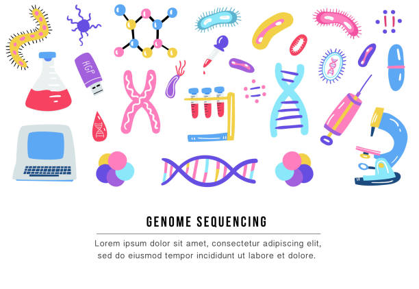 Hand drawn genome sequencing illustration. Human dna research technology symbols. Hand drawn genome sequencing illustration. Human dna research technology symbols. Nano technology concept made in vector. Human genome project. genetic research stock illustrations