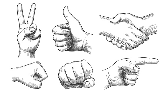 Hand drawn gestures. Pointer finger, strong fist and punch. Handshake, thumb up like and triumph victory gesture sketch vector illustration set