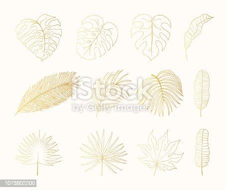 istock Hand drawn golden tropical rainforest leaves. Aralia, monstera, banana, palm leaf botanical gold leaf. Vector isolated illustration. 1073802200